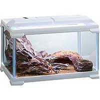 ジェックス エキゾテラ レプテリア300 Low ガラス製ケージ