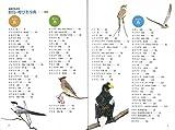 野鳥の呼び名事典 由来がわかる