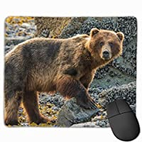 """Brown Bear On Beach Mouse Pad Non-Slip Rubber Gaming Mouse Pad Rectangle Mouse Pads for Computers Desktops Laptop 9.8"""" x 11.8"""""""