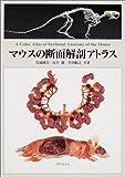 マウスの断面解剖アトラス