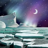 写真バックドロップ–The Icebreaker–10x 10ft。–高品質シームレスなファブリック