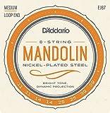 D'Addario ダダリオ マンドリン弦 ニッケル Medium .011-.039 EJ67 【国内正規品】