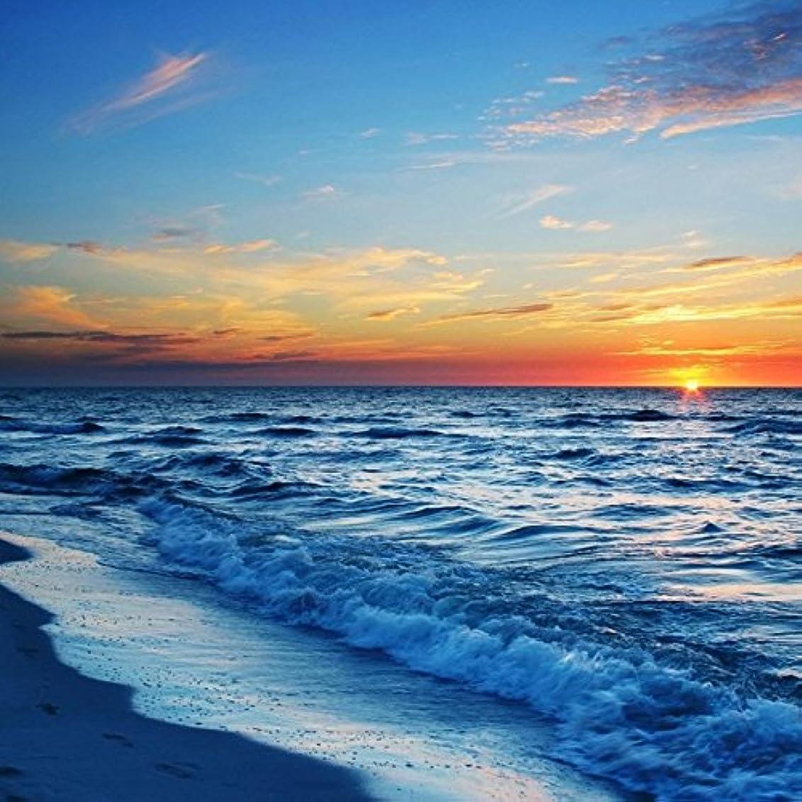 ナサニエル区誠実さ船酔いアロマフレグランスオイル シーブリーズ(Sea Breeze)