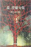 森澄雄句集 (芸林21世紀文庫)