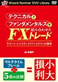 テクニカルとファンダメンタルズを組み合わせたFXトレード (<DVD>)