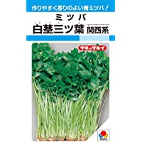 タキイ種苗 白茎三ツ葉(関西系) 15ml