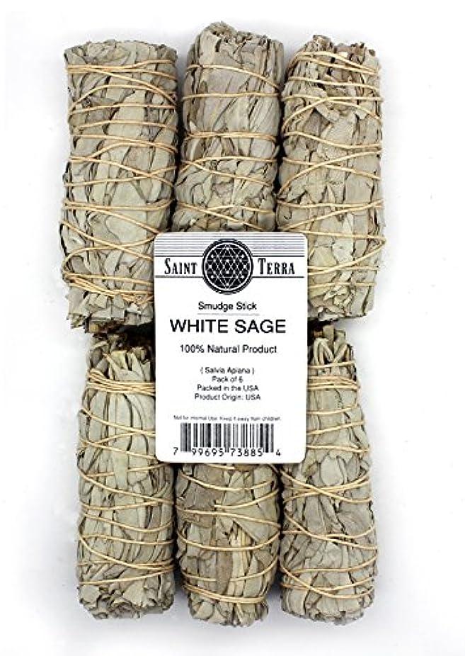 倫理的二年生衝突コースSaint Terra – パックof 6 Miniカリフォルニアホワイトセージスマッジスティック、4インチLong ( Salvia Apiana )