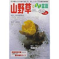 山野草とミニ盆栽 2008年 01月号 [雑誌]
