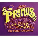 Primus & the Chocolate Factory
