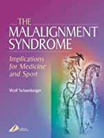 The Malalignment Syndrome: Implications for Medicine and Sport