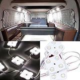 Favoto led モジュール ルームランプ 4* 10LED 12v 照明 IP67防水 省エネルギー 天井ライト広告サインボード・車などに対応 2本セット