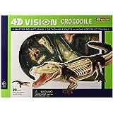 Famemaster 4D Vision Crocodile Anatomy Model [並行輸入品]