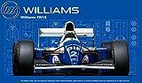 フジミ模型 1/20 グランプリシリーズ No.24 ウィリアムズ FW16ルノー (サンマリノGP/ブラジルGP/パシフィックGP) プラモデル GP24