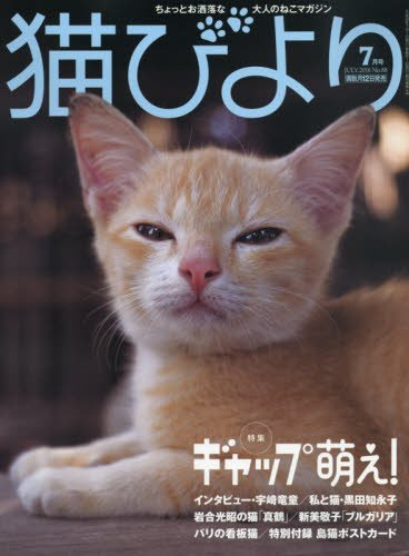 猫びより 2016年 07 月号