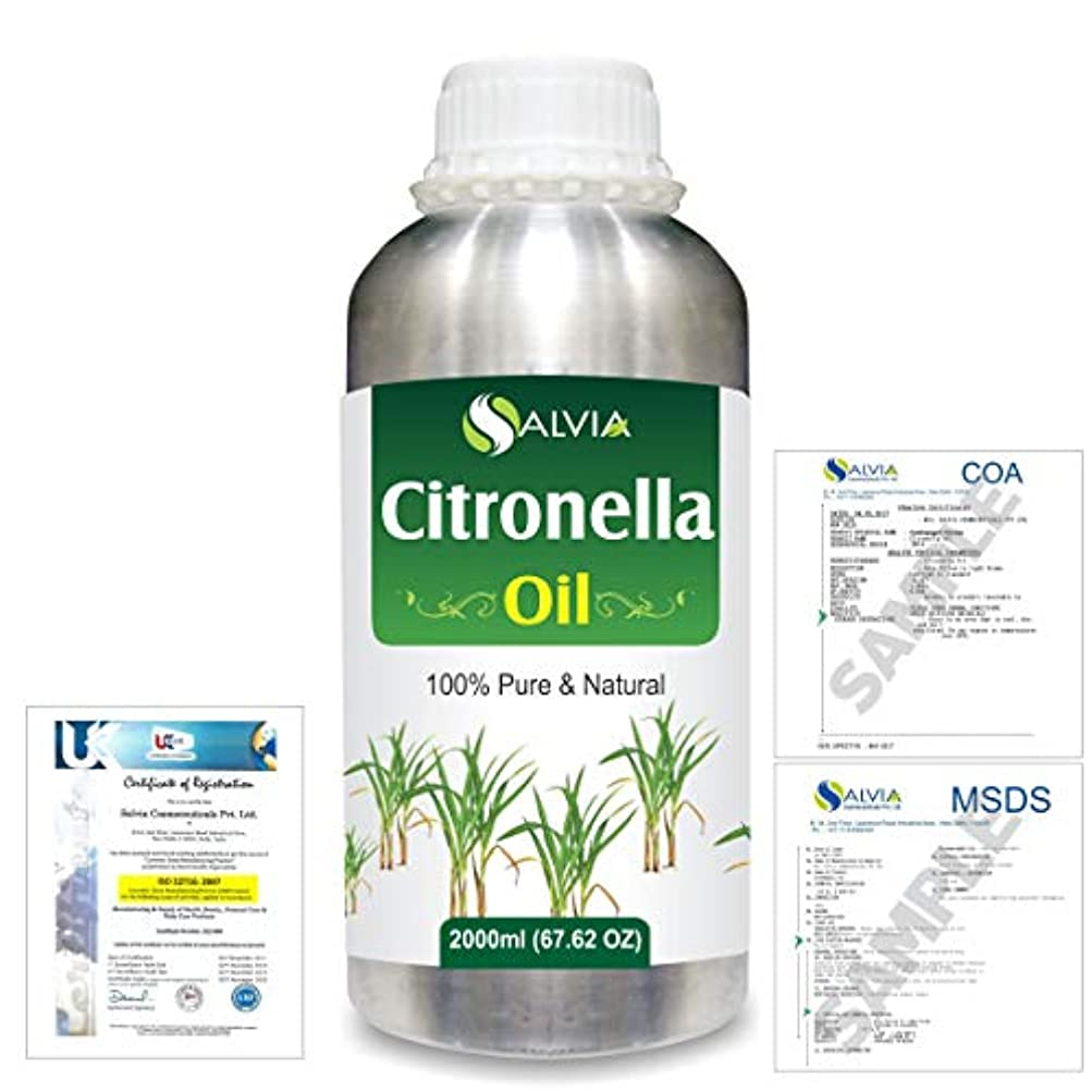 キャンペーン使役肺炎Citronella (Cymbopogon nardus) 100% Natural Pure Essential Oil 2000ml/67 fl.oz.