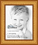 Best ArtToFramesフォトフレーム - ArtToFrames 8x10 inch Gold Speckeled Wood Picture Frame,WOMTI-795-8x10 Review