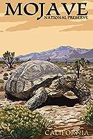 Tortoise–Mojave国立Preserve、カリフォルニア 12 x 18 Signed Art Print LANT-44108-708