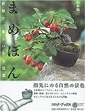 まめぼん―世界で一番ちいさな盆栽 (コロナ・ブックス)
