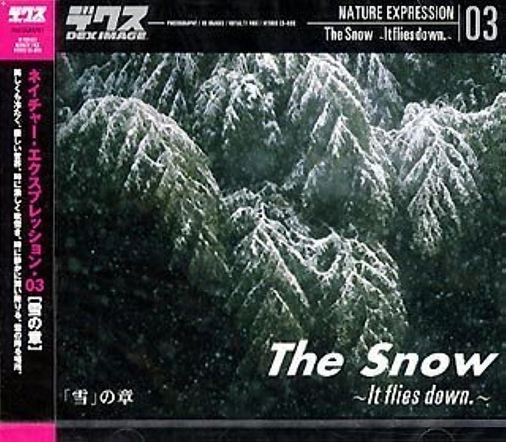 ネイチャー?エクスプレッション 03 「雪」の章