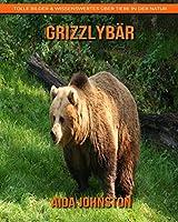 Grizzlybaer: Tolle Bilder & Wissenswertes ueber Tiere in der Natur
