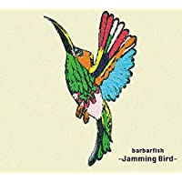 Jamming Bird