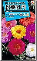マツバボタン 種子 八重咲き混合 (育苗可能本数:およそ500本) 0.2ml 松葉牡丹