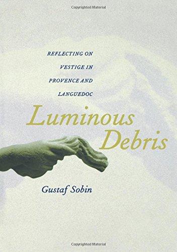 Download Luminous Debris 0520222458