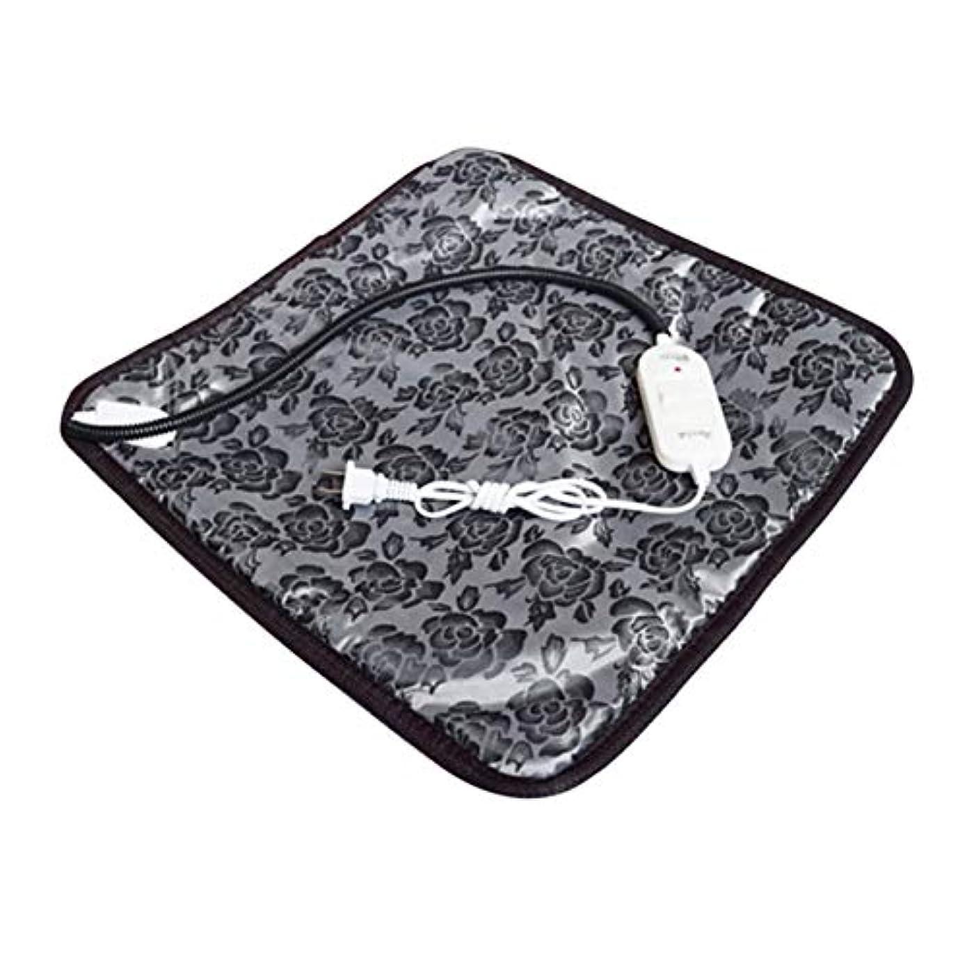 アプライアンス蒸発空中Saikogoods 快適な防水オックスフォード布ペット電気パッドは冬は暖かい温水暖房マット犬猫バニーベッドをキープブランケット 黒