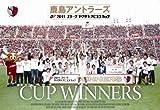 2011 Jリーグヤマザキナビスコカップ 鹿島アントラーズ カップウィナーズ[DSSV-084][DVD]