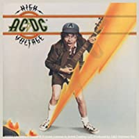 Licenses Products AC/DC High Voltage Sticker [並行輸入品]