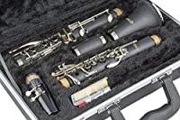 LJ Hutchen Bb Clarinet with Hardshell Case [並行輸入品]