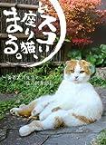 どスコい座り猫、まる。〜養老孟司先生と猫の営業部長