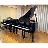 KAWAI グランドピアノ KG2D
