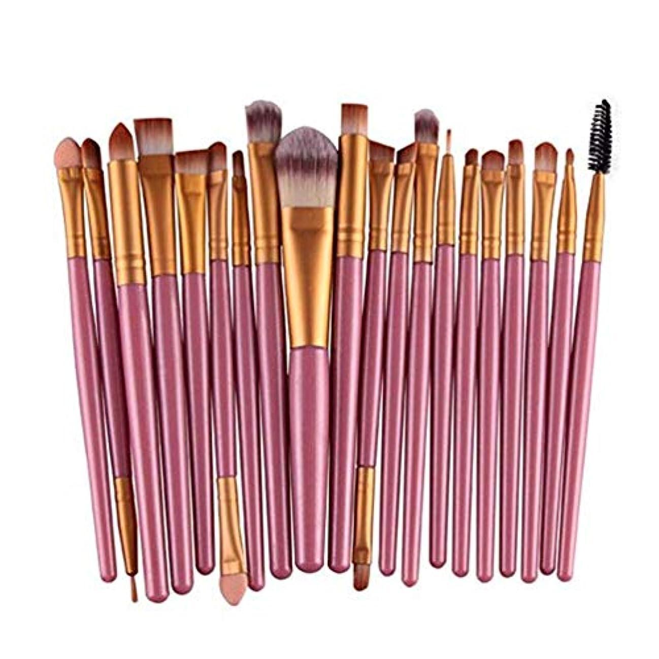 六分儀優れました動機付けるアイシャドウブラシセット20ピース化粧アイブラシアイシャドウブレンドブラシアイブロウアイライナーリップブラシ美容ブラシ、ギフトに最適 (Color : Pink)