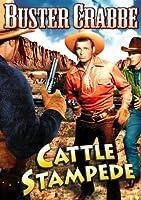 Cattle Stampede [DVD] [Import]