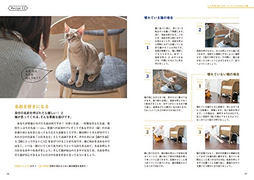 猫との暮らしが変わる遊びのレシピ: 楽しく仲良く役に立つ!科学的トレーニング