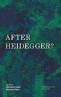 After Heidegger? (New Heidegger Research)