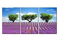 アートパネル Horizonv近くヴァロンソルプロヴァンスフランス3つの小品絵画現代クレー額縁アートワーク風景写真フォトプリントでキャンバスプリントウォールアートピクチャー美しいラベンダー咲く花フィールド木
