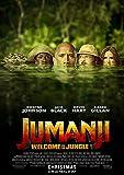 映画 ジュマンジ ウェルカム・トゥ・ジャングル ポスター 42x30cm Jumanji: Welcome to the Jungle ドウェイン ジョンソン ジャック ブラック ケビン ハート