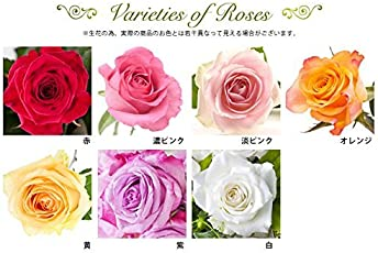 バラギフト専門店のマミーローズ 選べるバラ本数セレクト 還暦祝い 誕生日 プロポーズ 贈り物の豪華なバラの花束(生花)