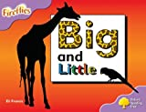 Oxford Reading Tree: Stage 1+: Fireflies: Big and Little