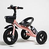 Fenfen Children 's Tricycle三輪車バイク2 – 6年古い子供の車ベビーブルー/ピンク/ホワイト/グリーン、714858 CM
