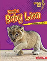 Meet a Baby Lion (Lightning Bolt Books: Baby African Animals)