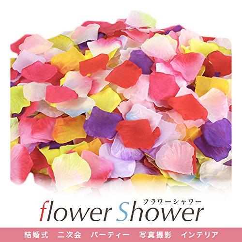 【Rapid Ship】フラワーシャワー 花びら 結婚式 ウェディング (20色 1000枚)