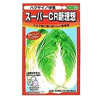 【種子】白菜(ハクサイ)スーパーCR新理想白菜 100粒