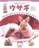 ウサギ (小動物ビギナーズガイド)