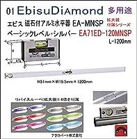磁石付ベーシックレベル・シルバー1200mm EA71ED-120MNSP拡大鏡付