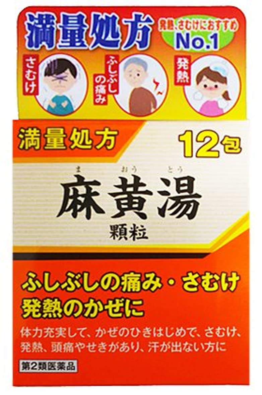 債権者革新め言葉【第2類医薬品】阪本漢法の麻黄湯顆粒12包 ×2