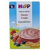 Hipp Organic Milk Pap Forest Fruits Yogurt, 250g