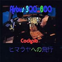エアバスA300-600コックピット ヒマラヤ飛行